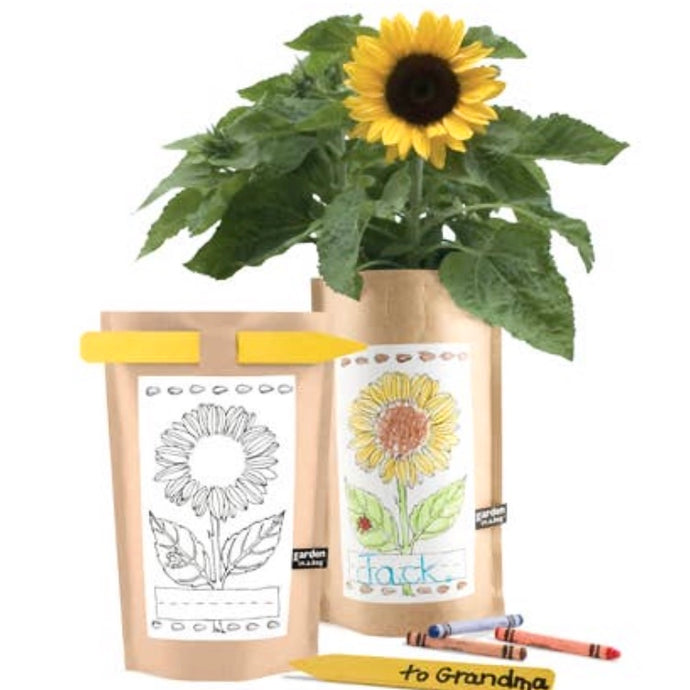 Garden in a Bag Sunflower Kids/Gift for Mom