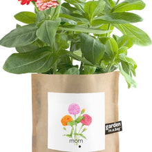 Garden in a Bag Mom Zinnea