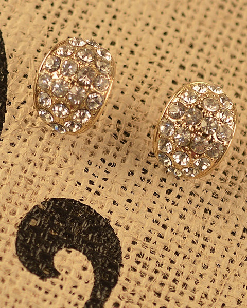 Oval Shaped Stone Studded Earrings - The Jewelry Barn