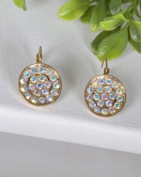 Crystal Studded Latch Back Earrings - The Jewelry Barn