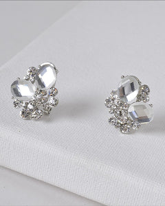 Crystal and Rhinestone Studded 3D Design Earrings - The Jewelry Barn