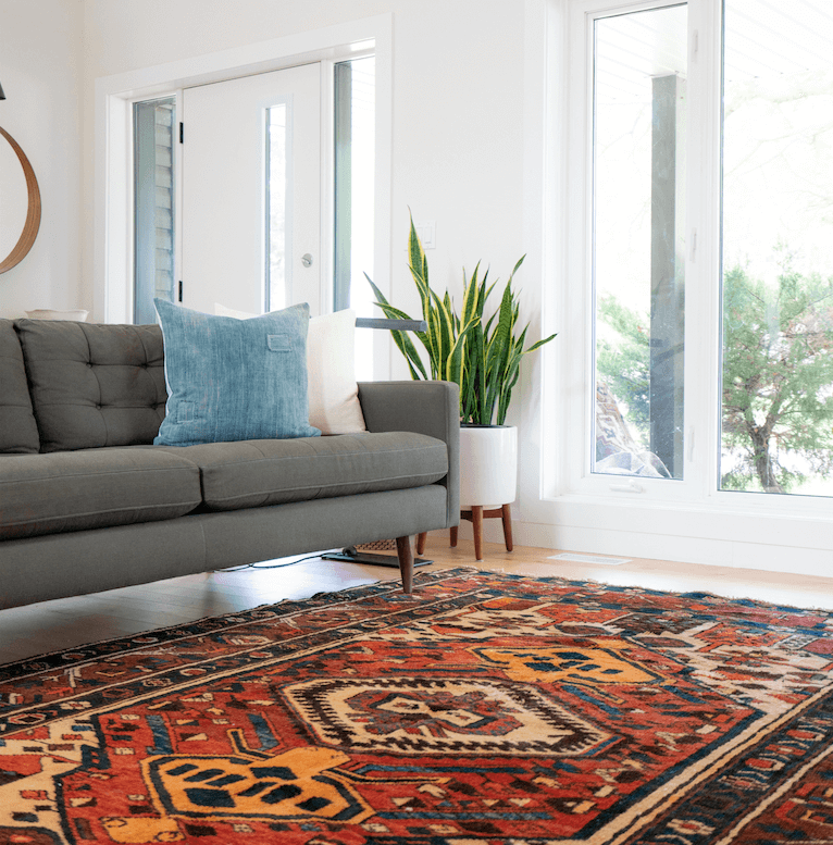 living room with bright patterned floor rug