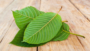Kava vs Kratom: What's the Difference?