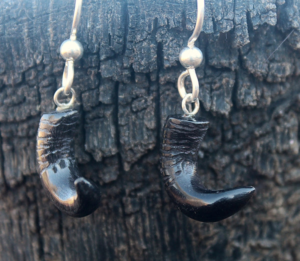 Bison Horn Earrings