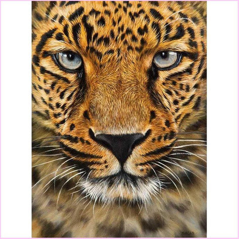 Leopard Close Up-Diamond Painting Kit-30x40cm (12x16 in)-Square-Heartful Diamonds