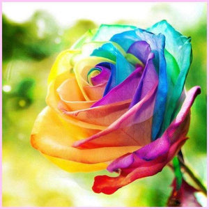 Prismatic Rainbow Rose-Diamond Painting Kit USPS-40x40cm (16x16 in)-Round-Heartful Diamonds
