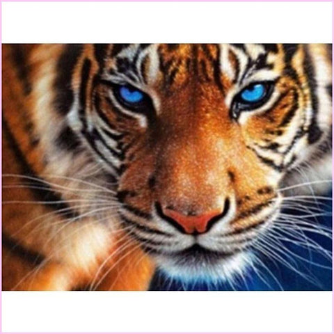 Image of Blue Eyed Feline Predator-Diamond Painting Kit USPS-Tiger-30x40cm (12x16 in)-Square-Heartful Diamonds