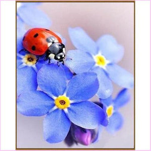 Cute Little Ladybug - Starter Edition-Starter Kit-Cute Little Ladybug-20x30cm (8x12 in)-Heartful Diamonds