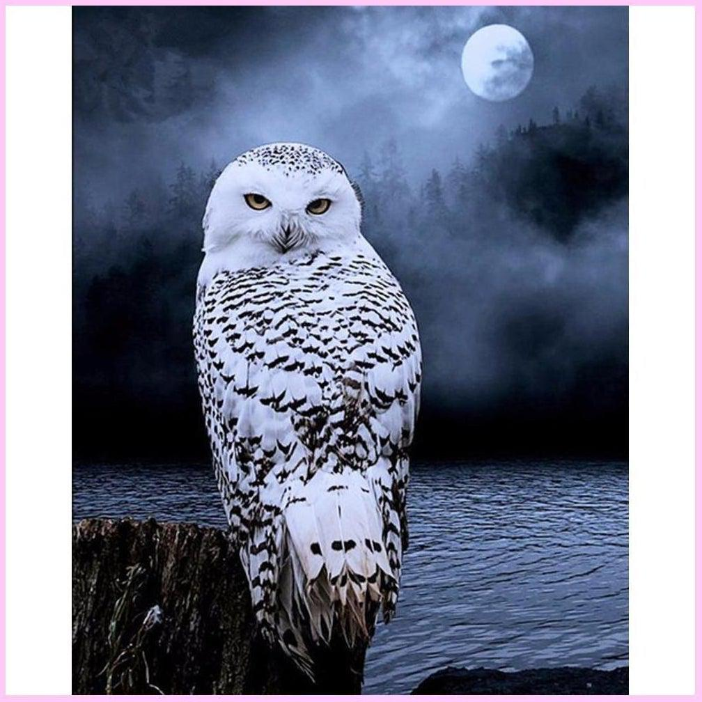 Snowy Owl in the Moonlight-Diamond Painting Kit-30x40cm (12x16 in)-Square-Heartful Diamonds