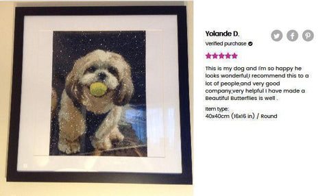 Image of 5 star review of a DIY custom diamond painting (size 16X16 inches) of a dog biting a ball from Heartful Diamonds