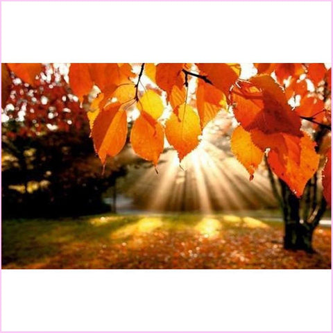 Sunshine Through Autumn Leaves - Starter Edition-Starter Kit-Autumn-20x30cm (8x12 in)-Heartful Diamonds
