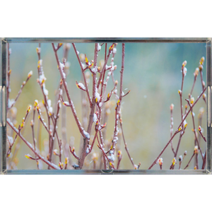 Hunter Creek Spring Snow | Acrylic Trays