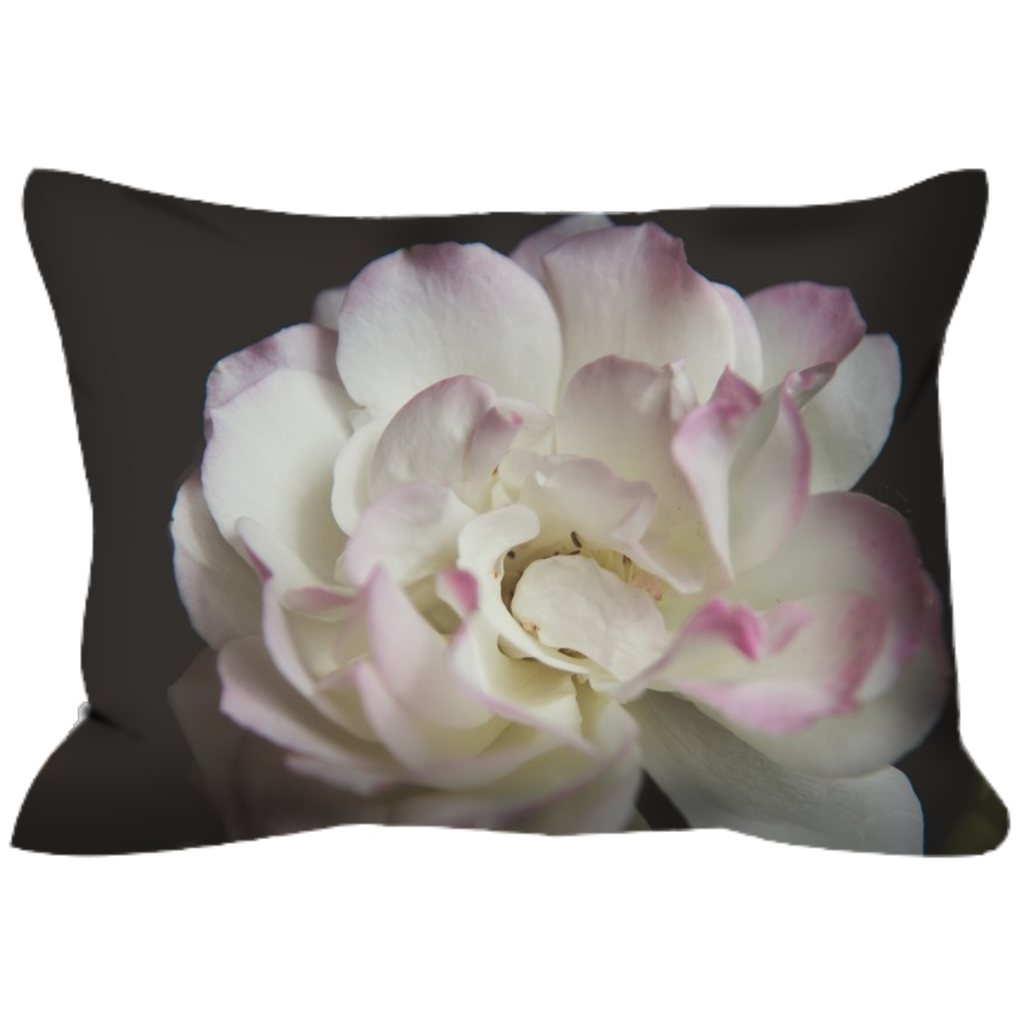 Pink Tipped Rose | 14x20 | Outdoor Pillow