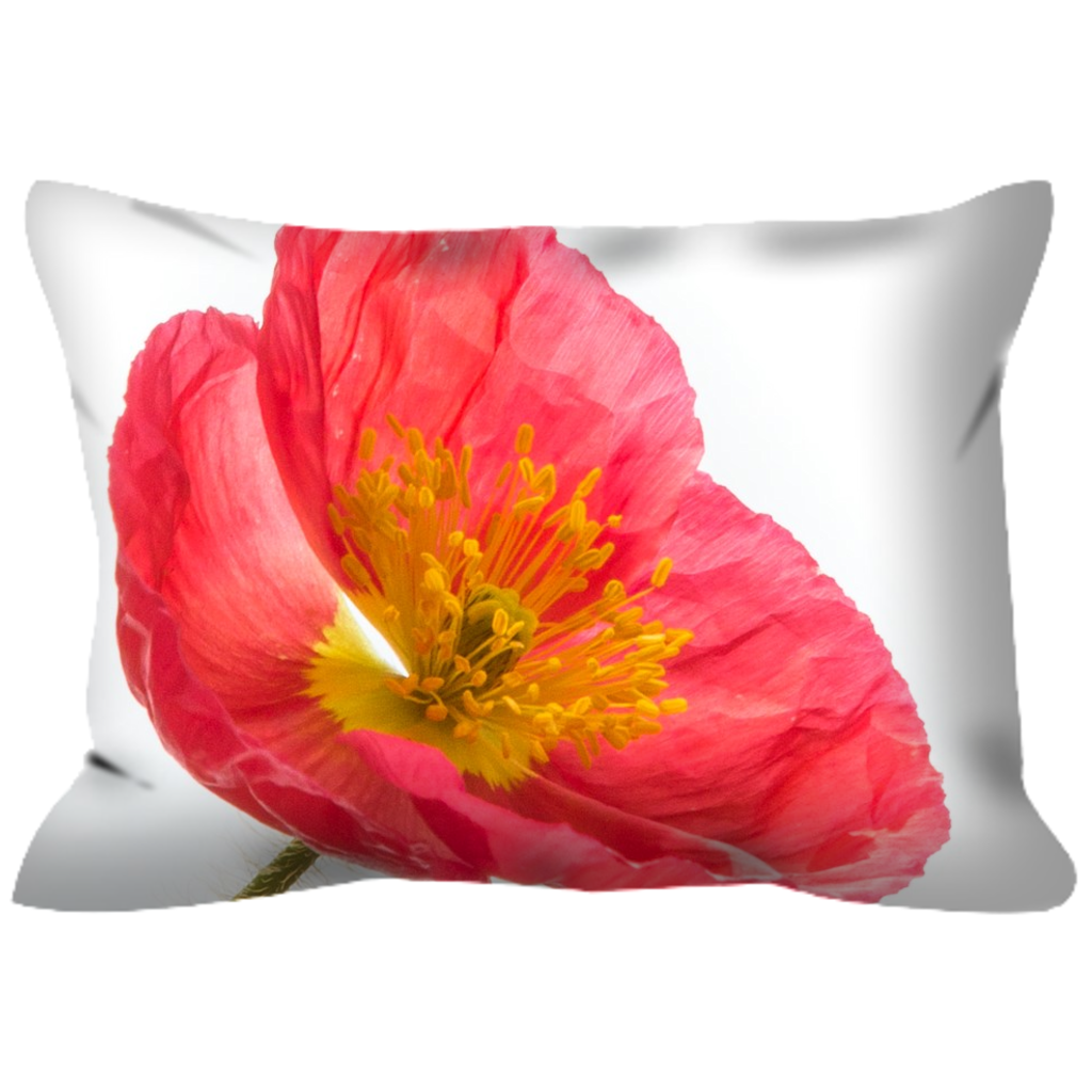 Pink Icelandic Poppy No. 3 | 14x20 | Outdoor Pillow