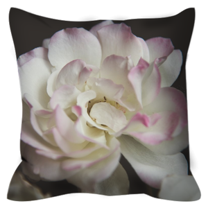 Pink Tipped Rose | 20x20 | Outdoor Pillow