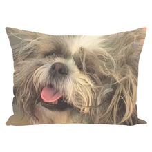Happy To Go (Melee ) | Dog Lover Collection | Throw Pillows