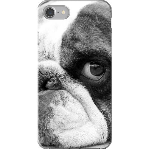 Bulldog Days (Flash) | Phone Cases for iPhone