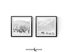 Two images of Aspen Elk Herd in Snow