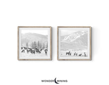 Elk Herd in Snow in Aspen in Frames