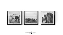 three framed wall art photographs of horses in iceland