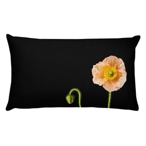 Peach Icelandic Poppy on Black | Rectangular 20x12 Decorative Pillow