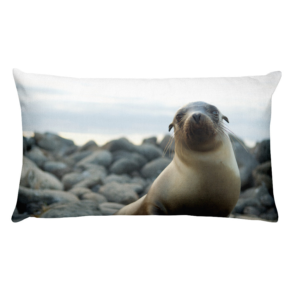 Galápagos Sea Lion • Rectangular 20x12 Decorative Pillow