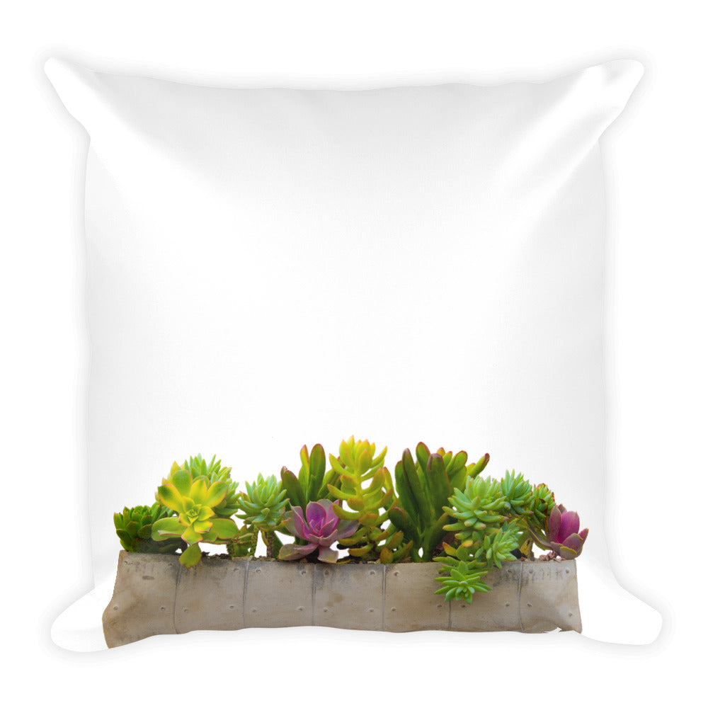 Summer Succulents No.1 | 18x18 Square Pillow with Insert