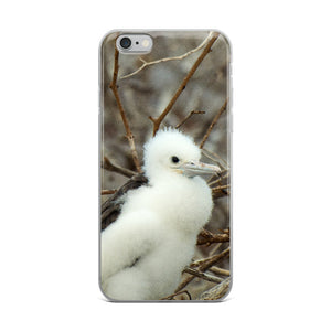 Galápagos Frigate Bird Hatchling | iPhone Case (All Sizes)