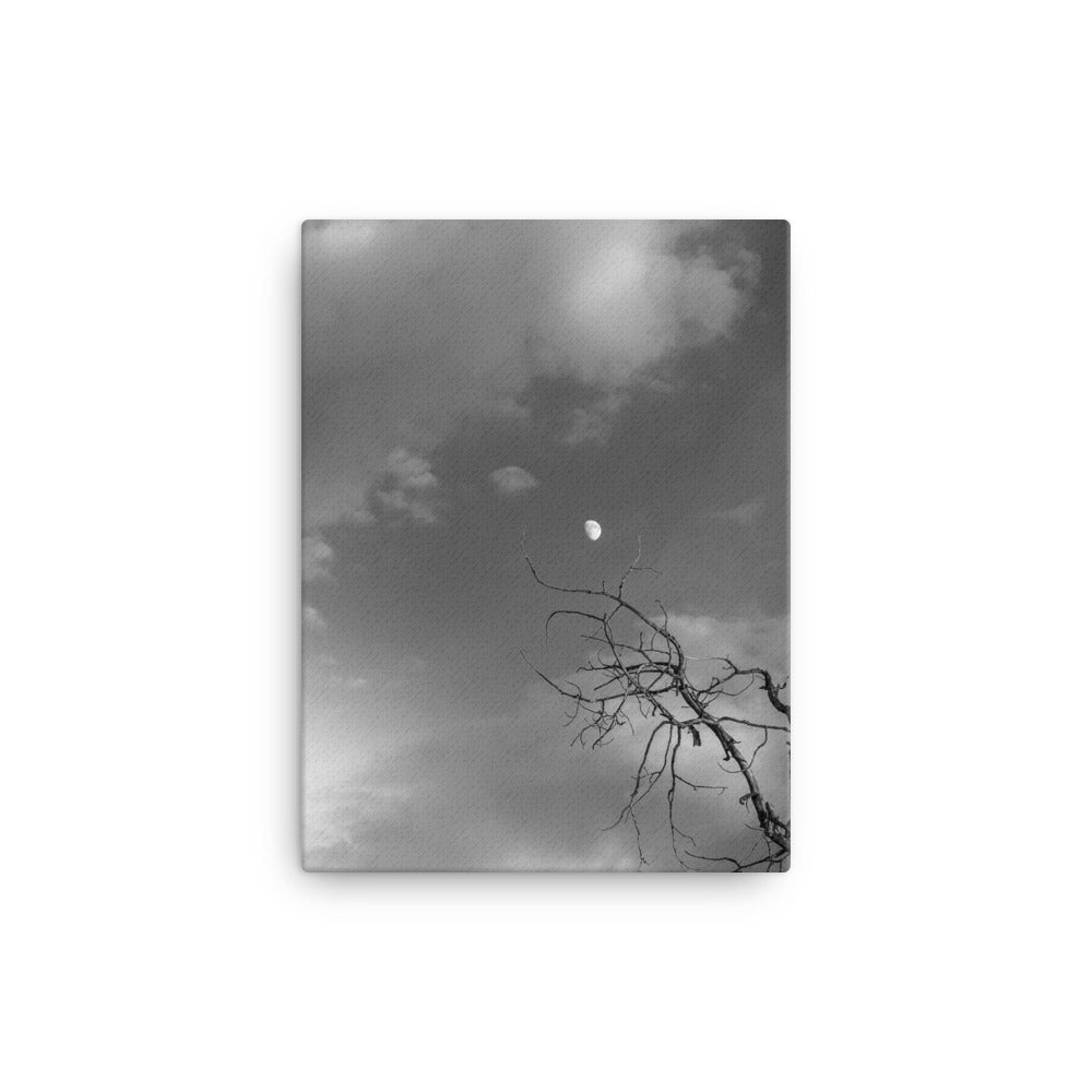 Reaching for the Moon (Aspen, CO) | 12x16 Canvas Print Vertical