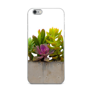 Pink and Green Succulents | iPhone Case (All Sizes)