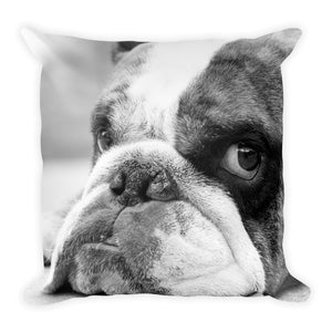 Bulldog Days (Flash) | 18x18 Decorative Square Pillow
