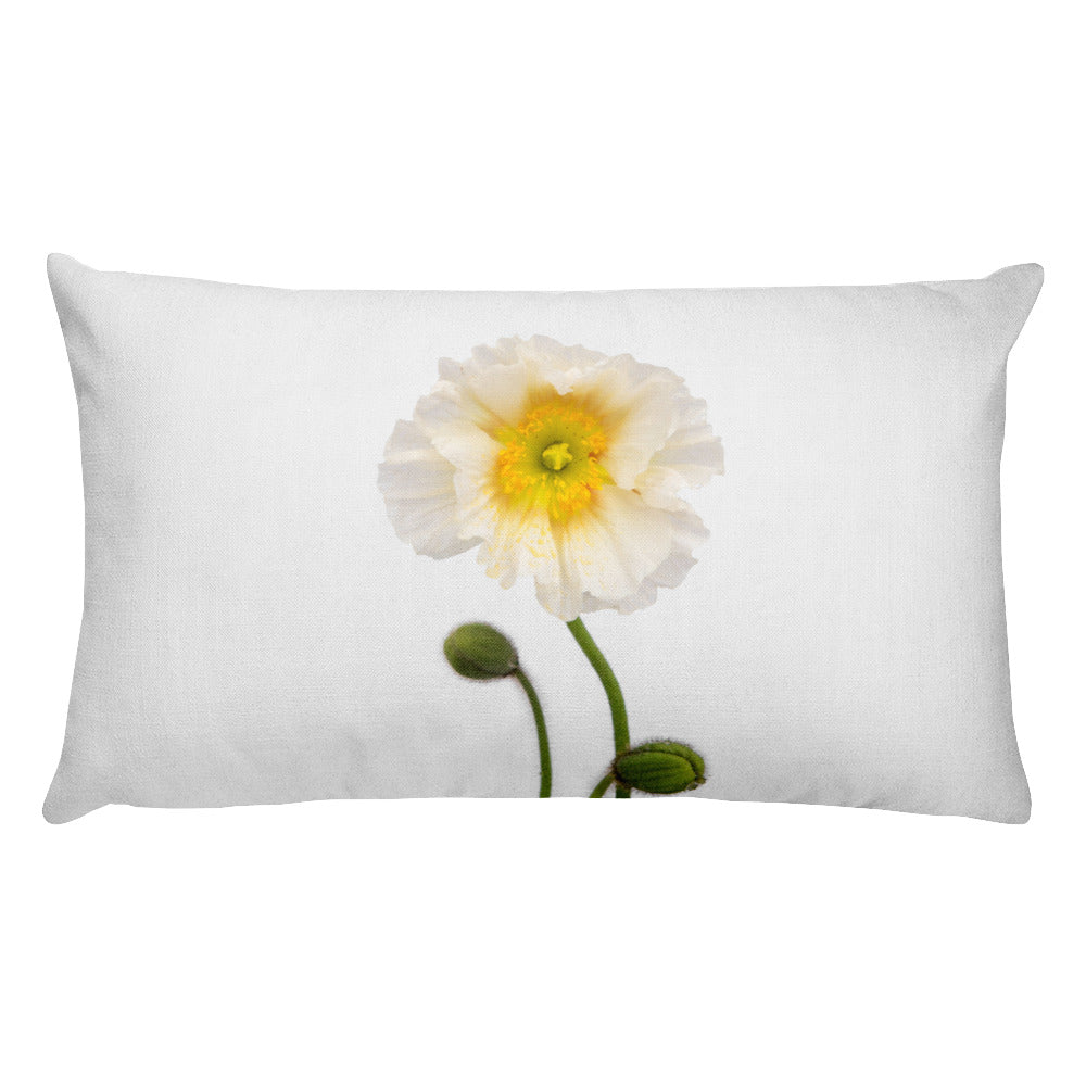 Sunburst White Icelandic Poppy | Rectangular 20x12 Decorative Pillow