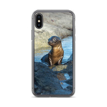 Galápagos Young Sea Lion at Play  | iPhone Case (All Sizes)
