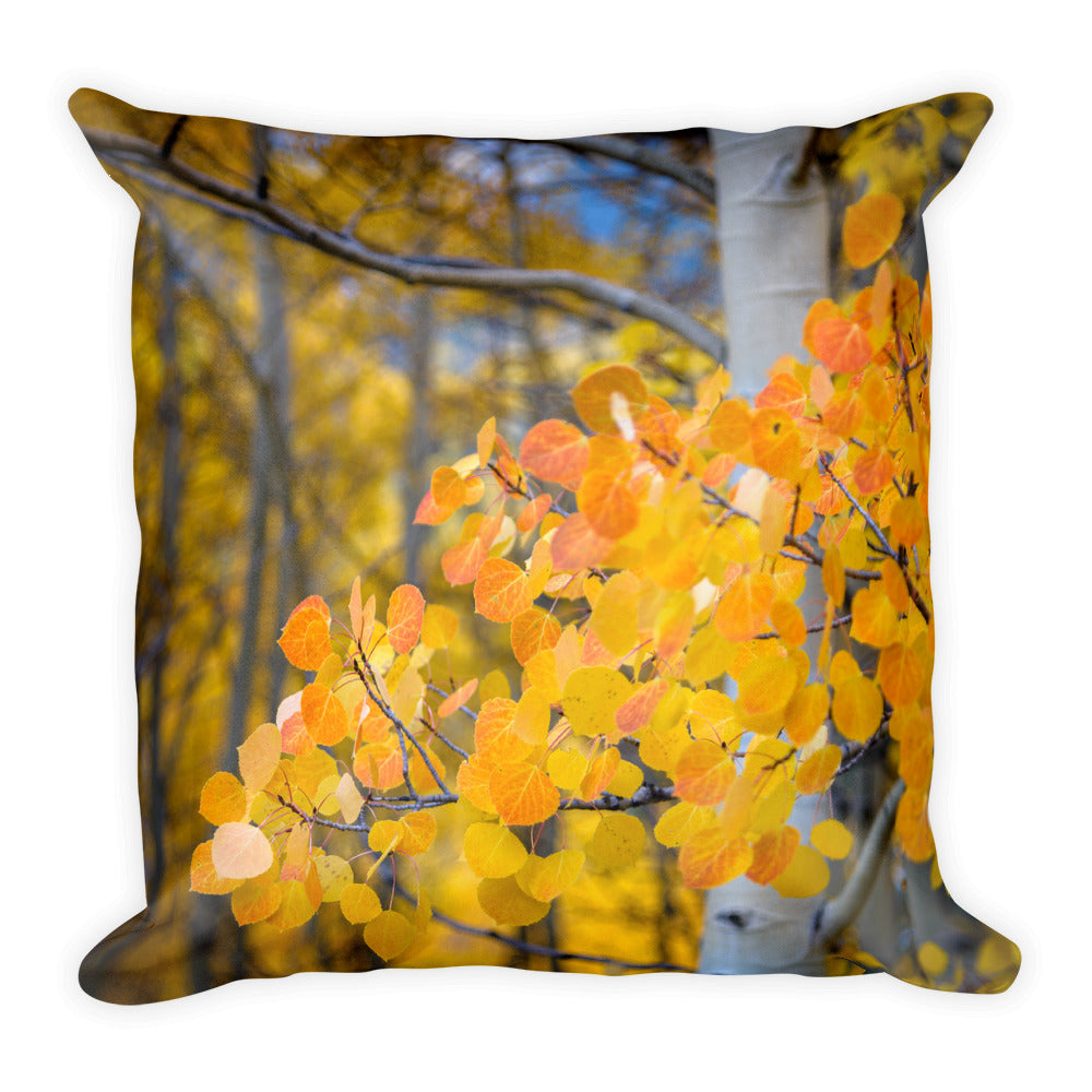 Orange Crush Aspen Leaves | 18x18 Square Pillow with Insert
