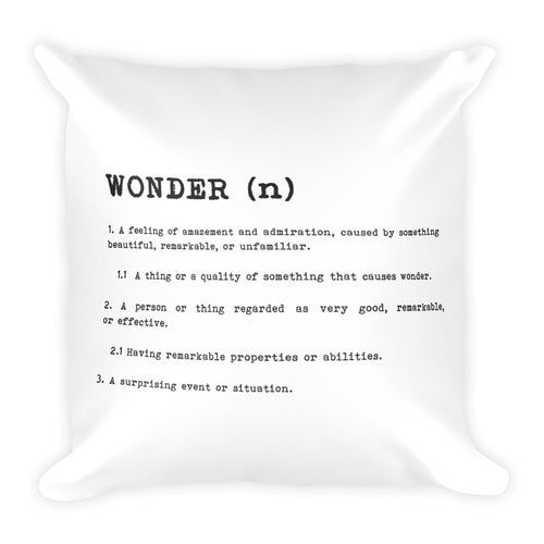 Wonder Definition 18x18 Square Pillow Modern Home Decor