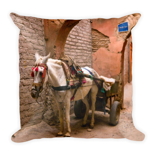 Moroccan Mule (Medina, Marrakesh) | 18x18 Square Pillow with Insert