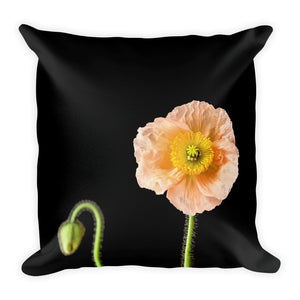 Peach Icelandic Poppy on Black | 18x18 Square Pillow with Insert