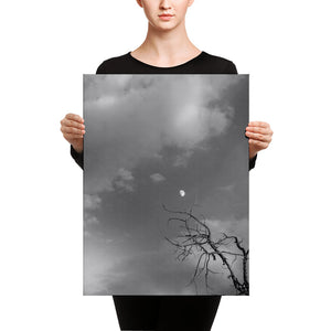Reaching for the Moon (Aspen, CO) 18x24 Canvas Print Vertical