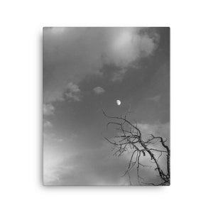 Reaching for the Moon (Aspen, CO) | 16x20 Canvas Print Vertical