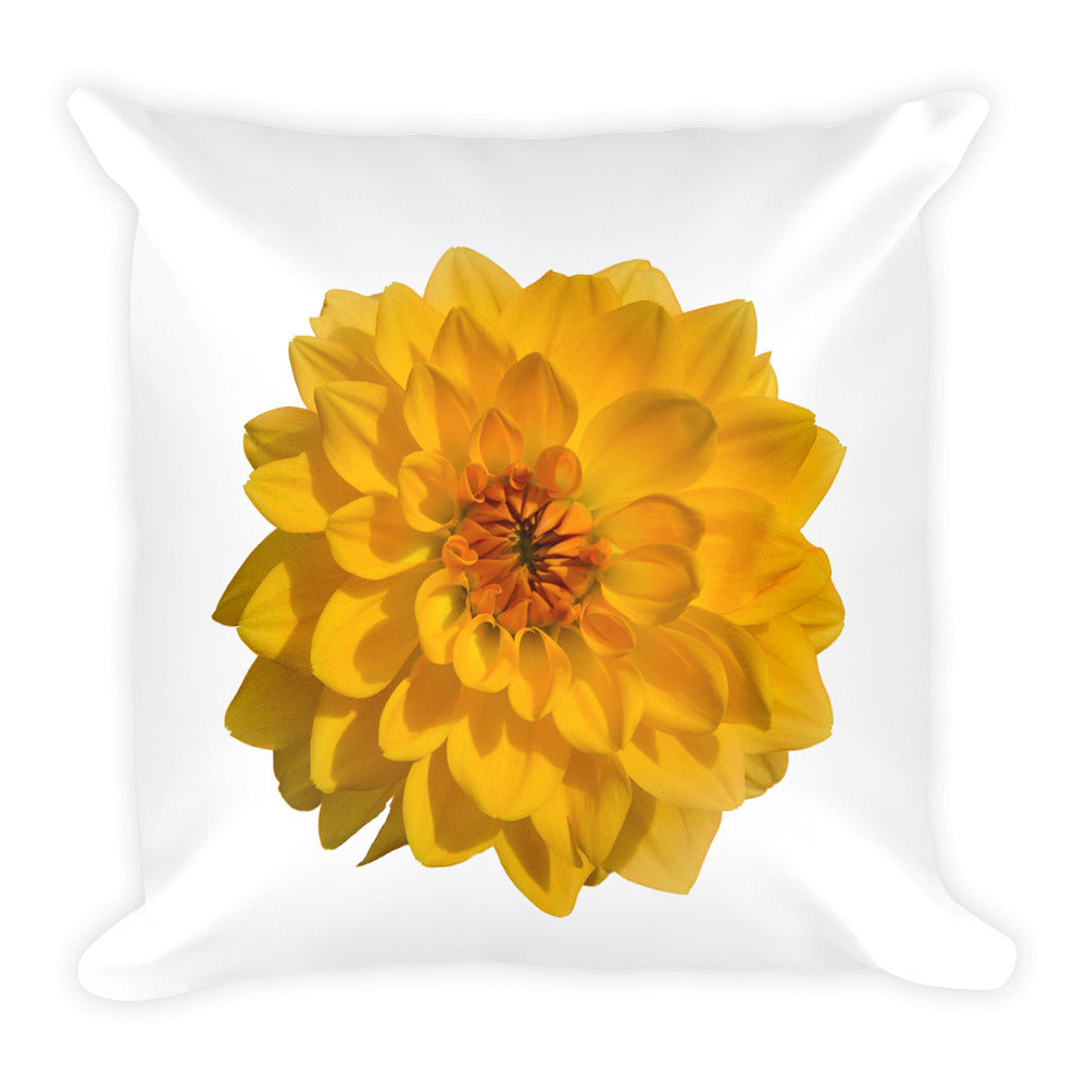 Giant Golden Dahlia | 18x18 Square Pillow with Insert