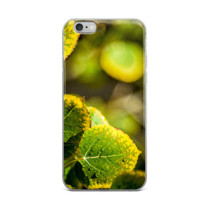 Aspen Leaves in Transition | iPhone Case (All Sizes)