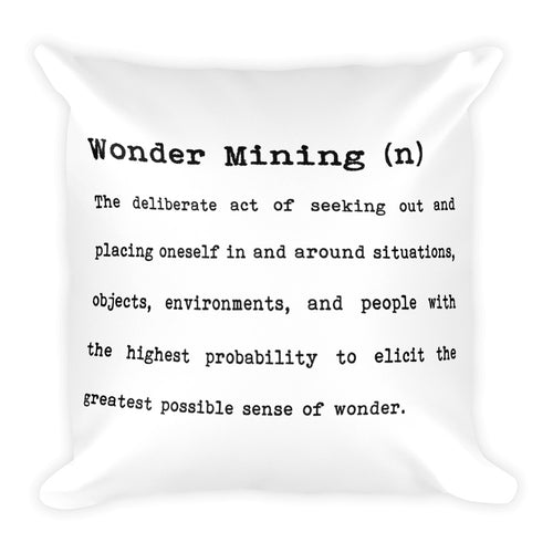 Wonder Mining Definition | 18x18 Square Decorative Pillow