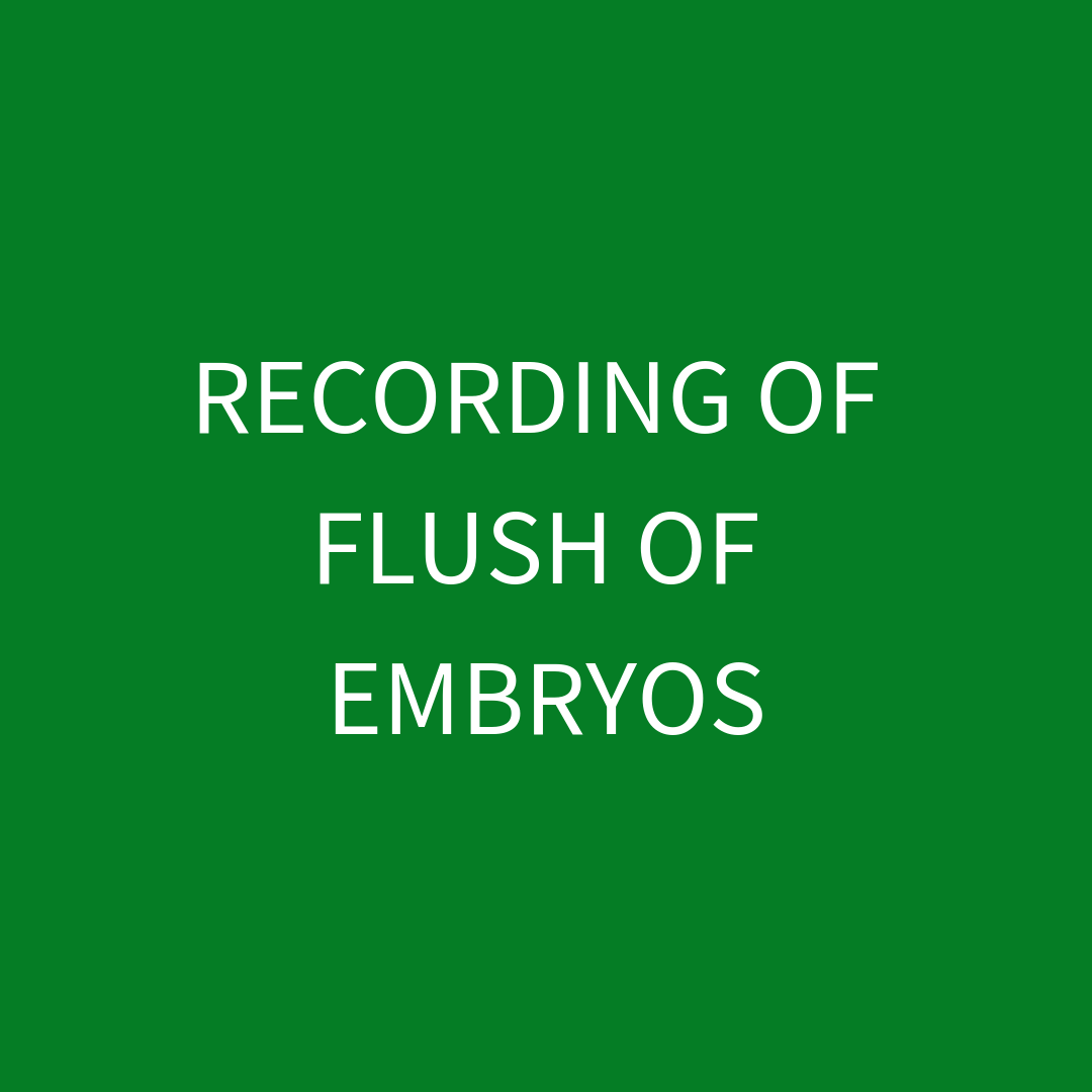 Recording of Flush of Embryos