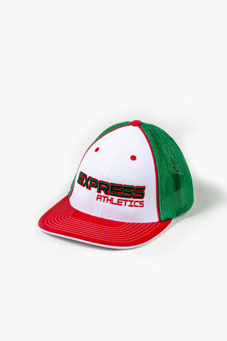 Express Logo 404M Flex Fit Hat: Red, Green & White