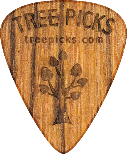 Guitar Pick - Zebra Wood - Tree Picks - Zebrano