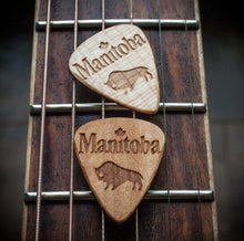 Manitoba Guitar Picks (5 picks)