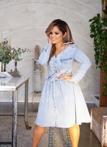 Darling Denim | Dress | detachable top/bottom