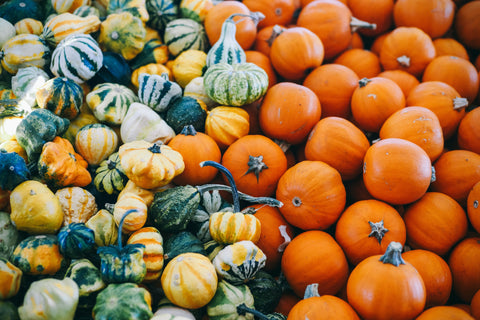squashes and pumpkins and autumn beauty