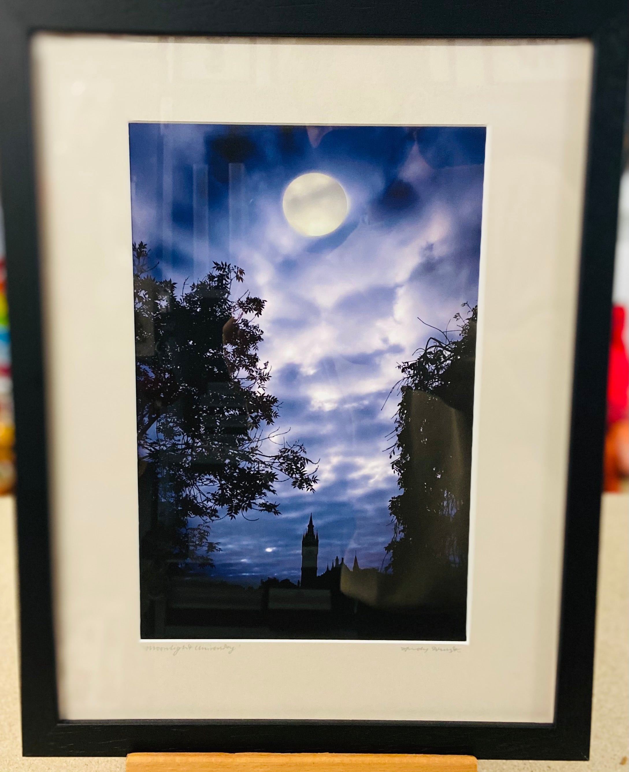 """Moonlight University"" Framed and Mounted Print"