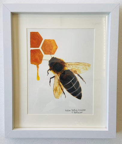 """Native Scottish Honeybee"""